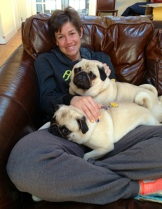 The comforting cuteness of pugs is a powerful thing.